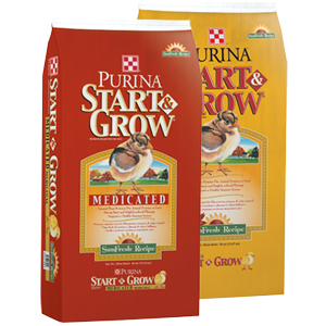 Purina Start and Grow Chick Feed www.standleyfeed.com #standleyfeed.com