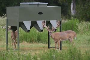 deer feeder for sale whitetails viking feeders