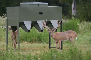 Supplemental Deer Feeding Programs
