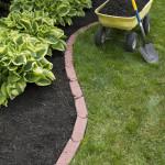 July Gardening Tips
