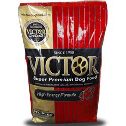 Victor_High Energy