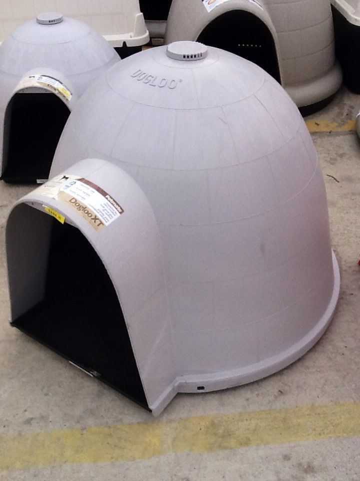 Igloo Dog House Standley Feed And Seed