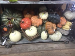 Fall decor standley 3